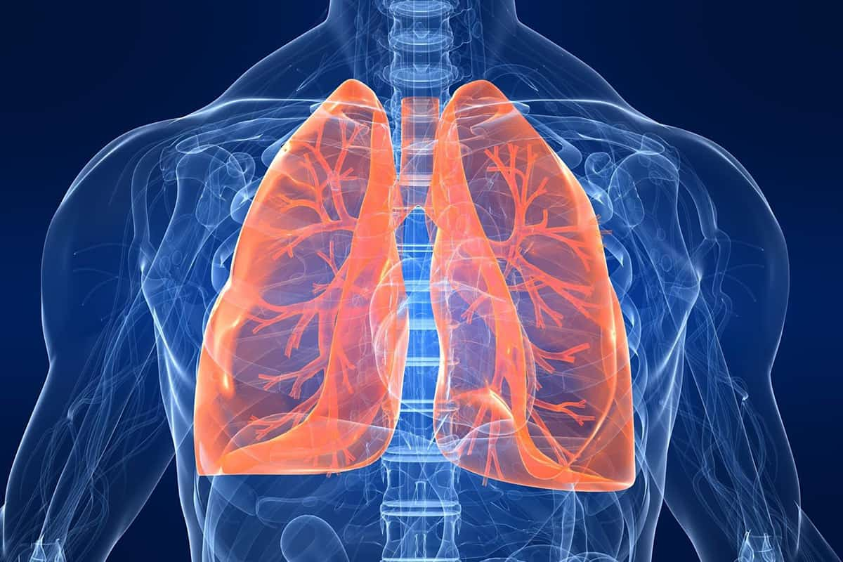 علاج الحساسية الصدرية والكحة