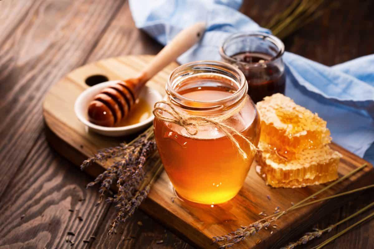 هل العسل مضر للحامل