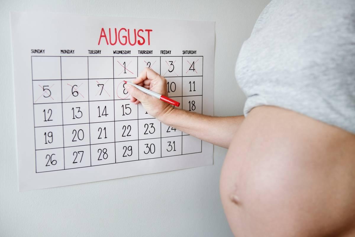 جدول اسابيع الحمل الصحيح