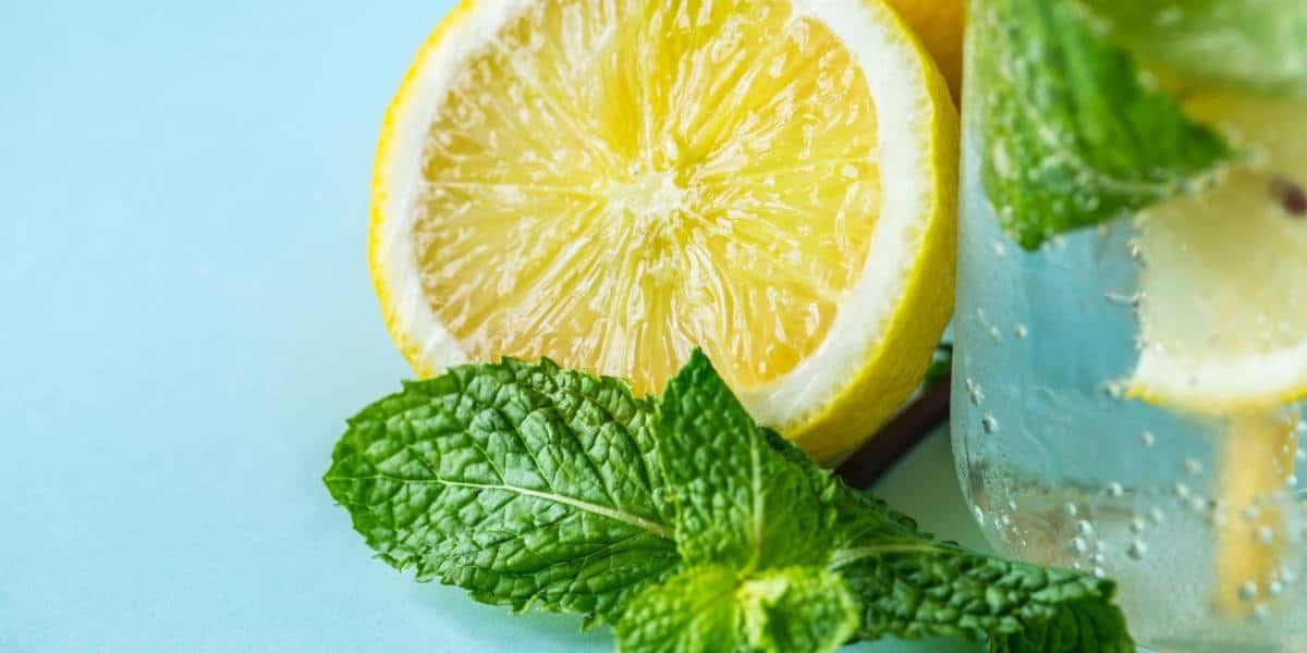 الليمون للحامل