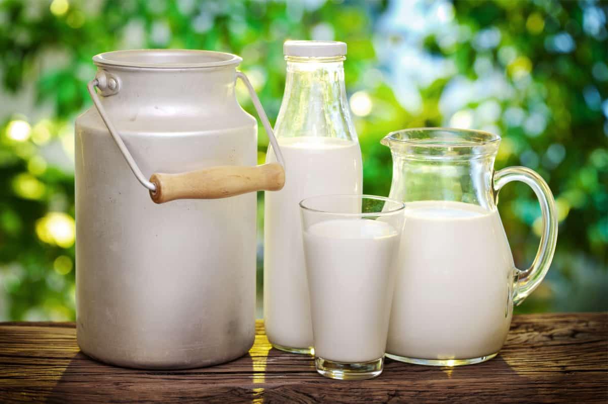 هل الحليب مفيد للحامل