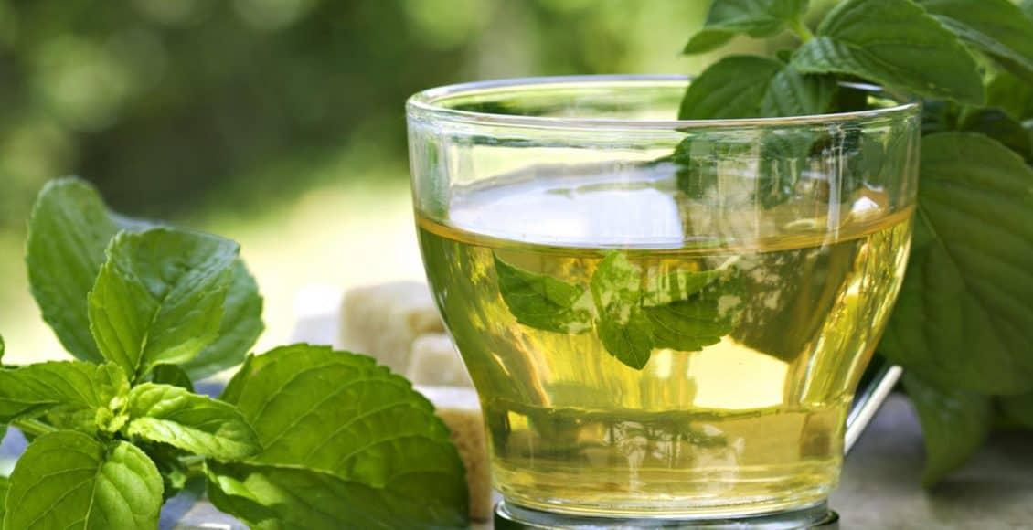 هل شاي الأعشاب لتهدئة المعدة والأمعاء آمن للأطفال