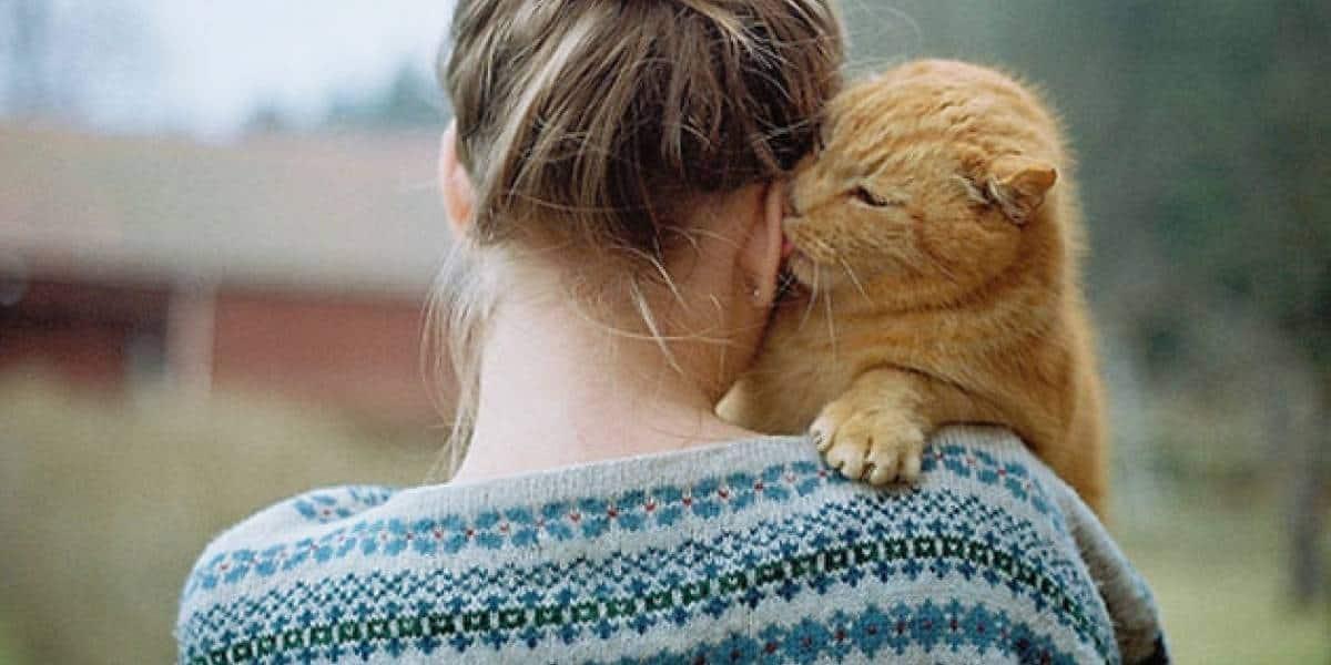 هل القطط تسبب عقم للنساء