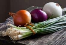 ماذا يحدث للجنين عند اكل البصل