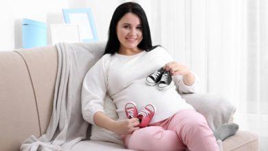 كيف يحدث الحمل بتوأم